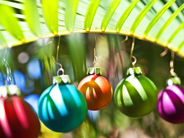 ornaments on a palm tree