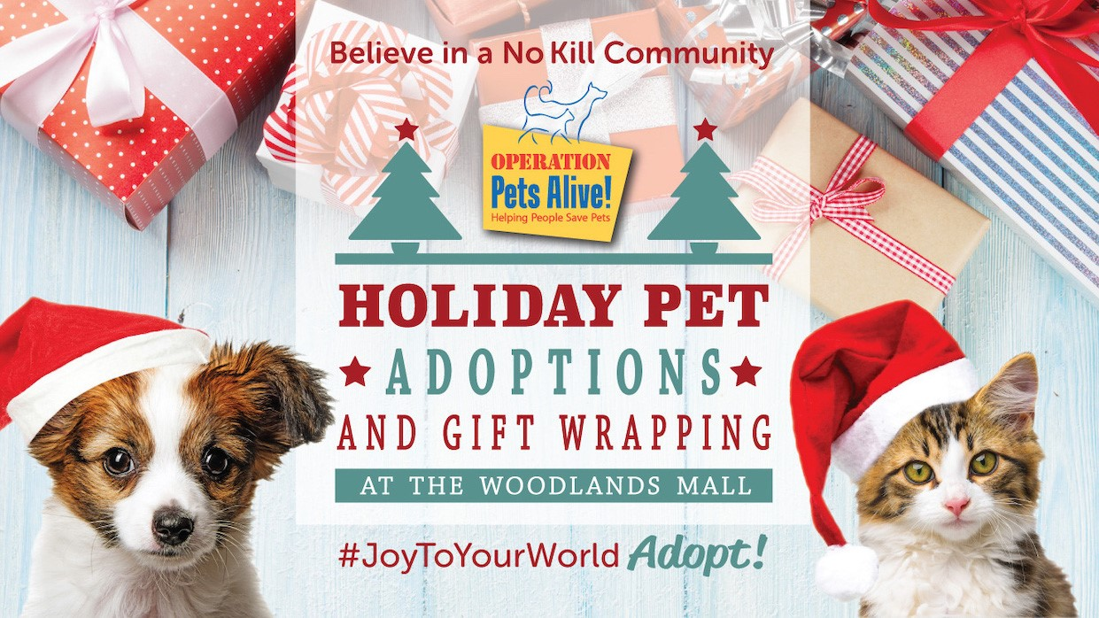 Operation Pets Alive Adoptions