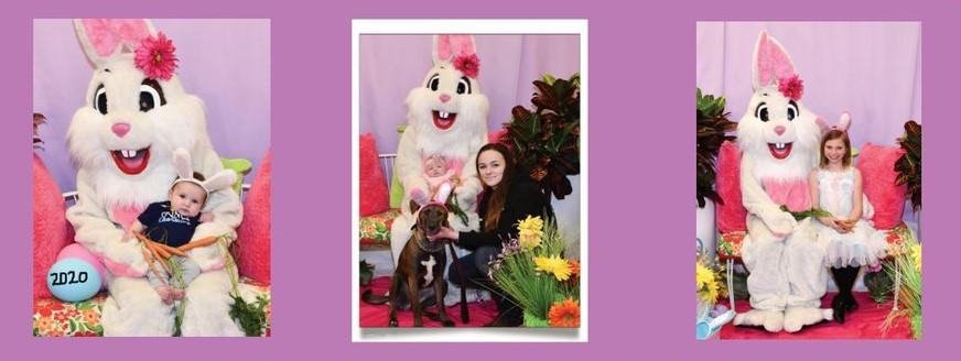 Easter Bunny Photos 2020