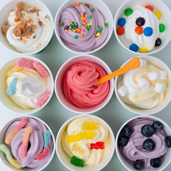 High School Senior Yogurt Nights