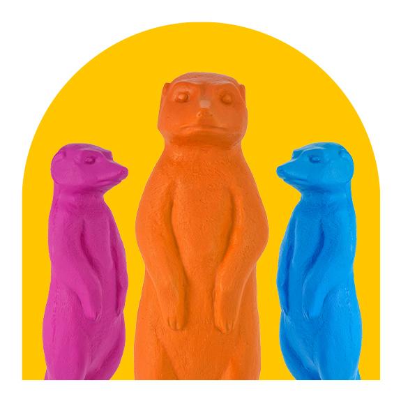 colorful meerkats