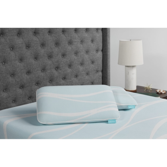 Buy One, Get One FREE Pillows* from Tempur-Pedic