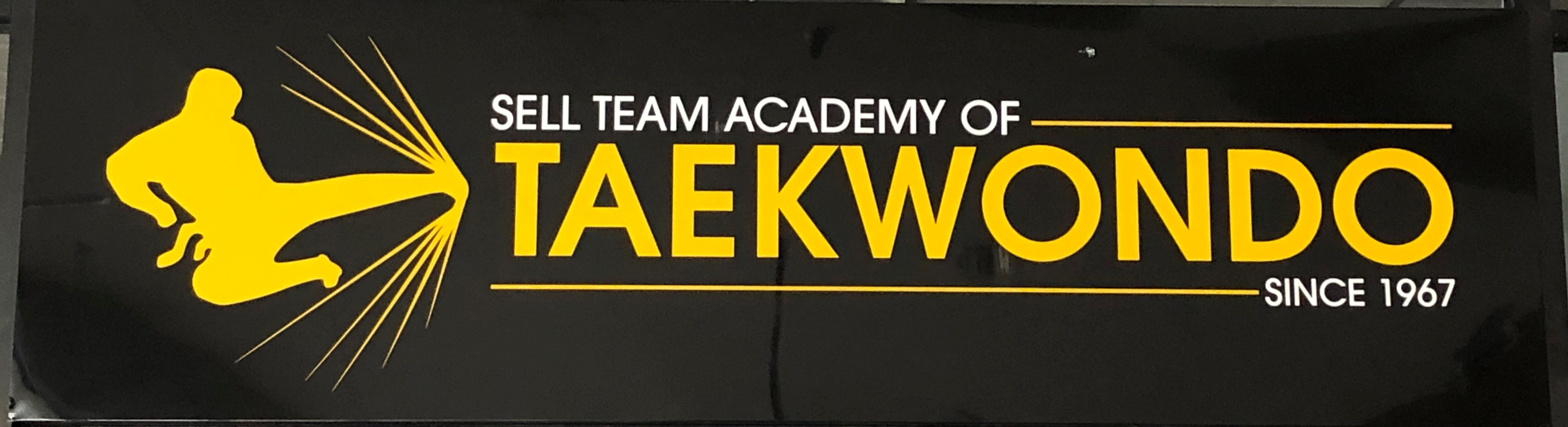 Sell Team Academy Of Taekwondo Logo