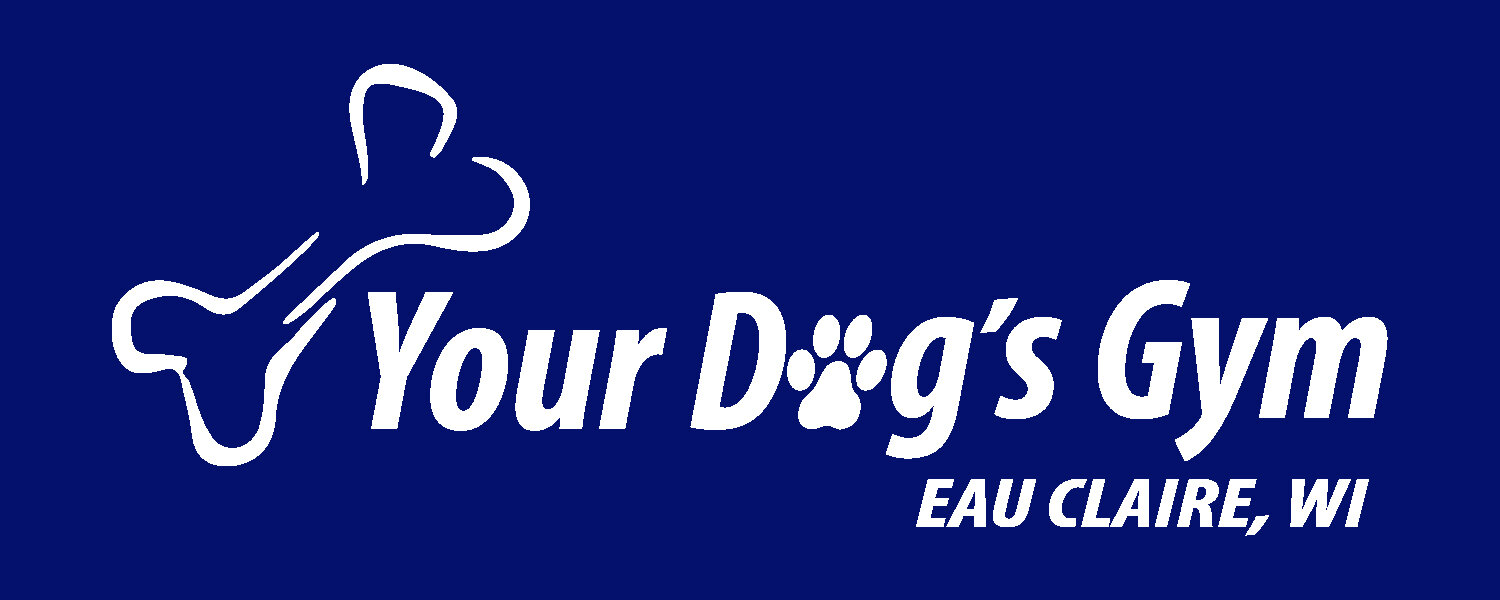 Your Dog's Gym Logo